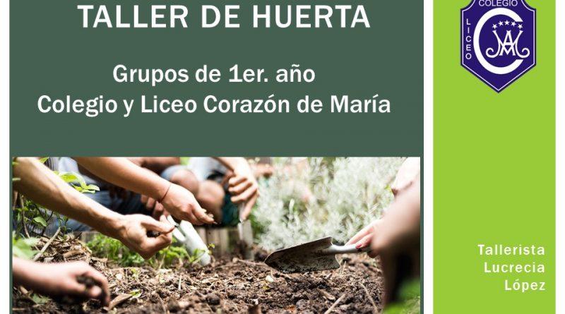 """""""CRECIMIENTO DE MI PLANTA"""" (Huerta 1ros)"""